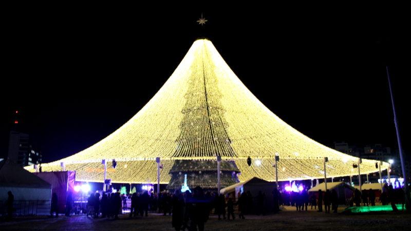 Состоялась церемония открытия главной ёлки Казани